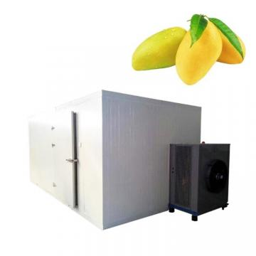 Big Industry Dryer, Fruit Dehydrator Machine