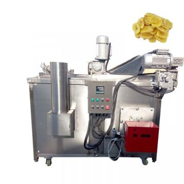 Manufacture Customized Commercial Industrial Chips Electric/Gas Deep Fryer for Restaurant