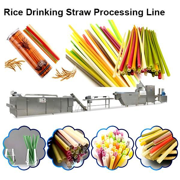 Broken Rice Shaping Twin Screw Extruder Fortified Rice Making Machine #1 image