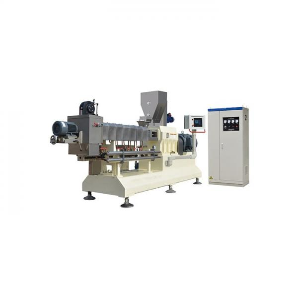 Factory Supply Fried Pellet Snacks Food Machinery #1 image