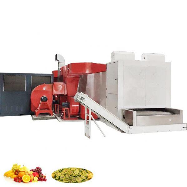Conveyor Mesh Belt Type Air Drying Machine / Vegetable Dryer Machine #2 image