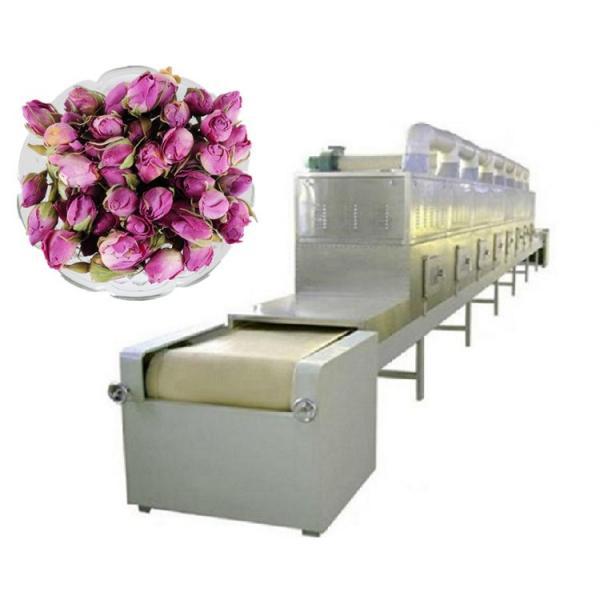 Fruits Processing Equipment / Conveyor Mesh Belt Dryer / Air Drying Machine #2 image