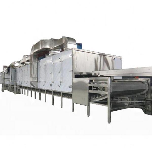 Conveyor Mesh Belt Type Air Drying Machine / Vegetable Dryer Machine #1 image